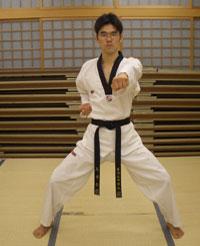 Stances blocking techniques striking techniques kicking techniques